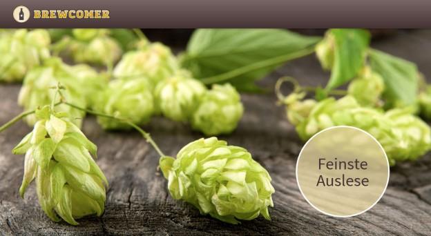 Screenshot brewcomer.com